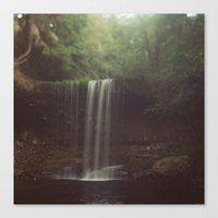 beaver Canvas Prints featuring Beaver Falls by Kevin Russ