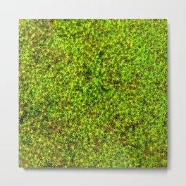 moss green II Metal Print
