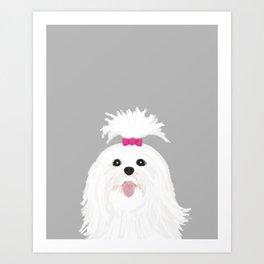 Pima - Shih Tzu cute white funny dog art customizable gift for dog person dog lovers pet art Art Print