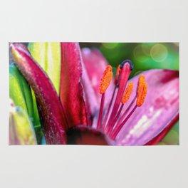 Blooming Tulip Rug