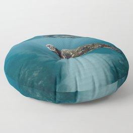 Take a peek Floor Pillow