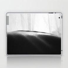 spinal Laptop & iPad Skin