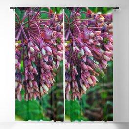 Milkweed Blackout Curtain