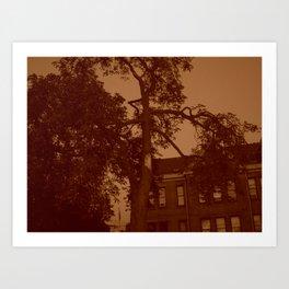 eerie schoolyard tree Art Print