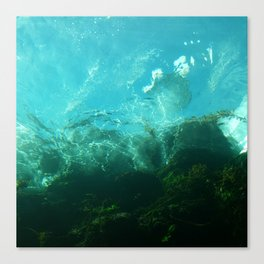 Under the Shore Canvas Print