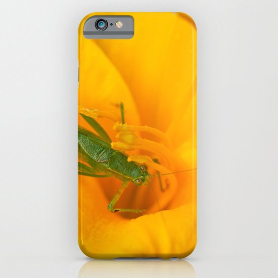 Summer Visitor iPhone & iPod Case