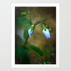 Blue Buds Art Print