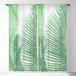 ARECALES II Sheer Curtain