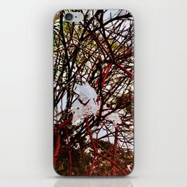 Red Winter Beauty Photography iPhone Skin