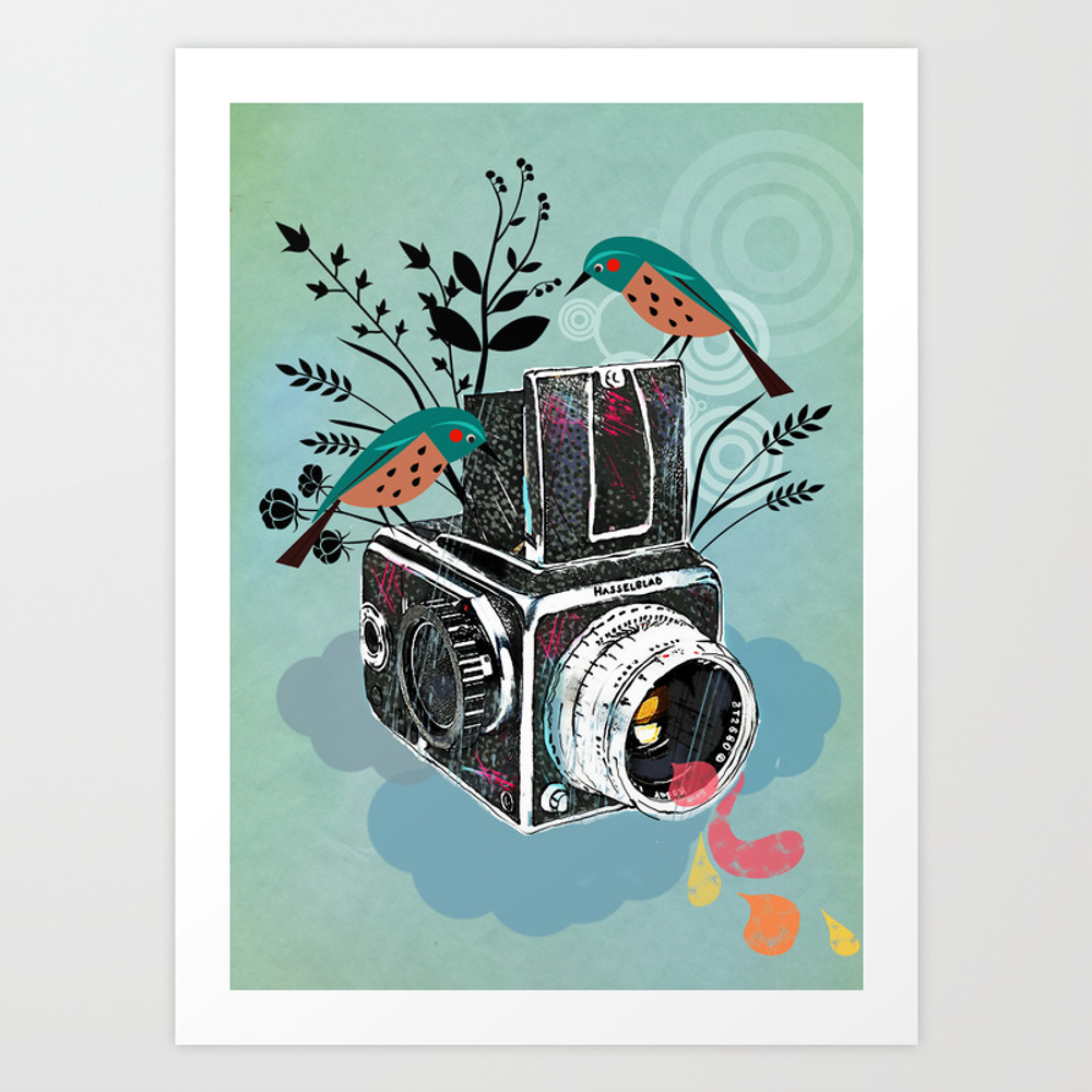 Hasselblad usa for Society 6 promo code