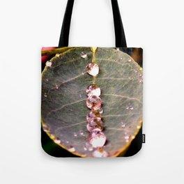 Water Drops Leaf Tote Bag