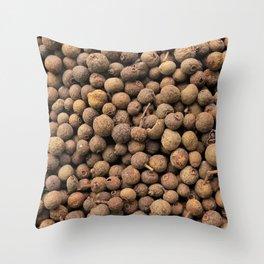 All Spice Seasoning Throw Pillow