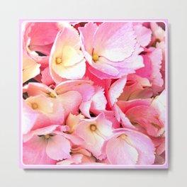 Flower | flowers | Pink Hydrangea | Nadia Bonello | Canada Metal Print