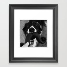 Border Collie Mustache Framed Art Print