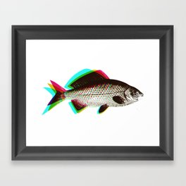 fish + fish + fish Framed Art Print
