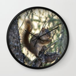 Soldotna Red Squirrel Wall Clock