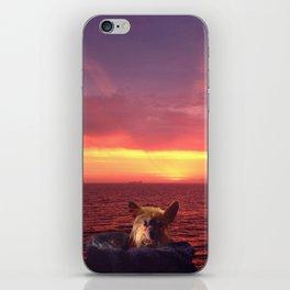 Choco California iPhone Skin