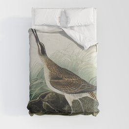 Hudsonian Curlew from Birds of America (1827) by John James Audubon etched by William Home Lizars Comforters