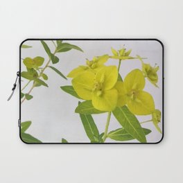 Euphorbia Cornigera Laptop Sleeve