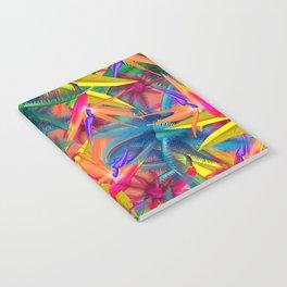new summer Notebook