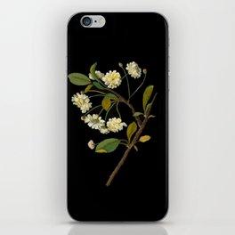 Prunus Cerasus Mary Delany Vintage Botanical Paper Flower Collage iPhone Skin