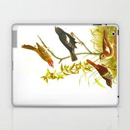 Lark Finch, Prairie Finch, Brown Song Sparrow Laptop & iPad Skin