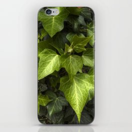 You are One of a Kind iPhone Skin