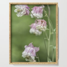 Columbine Pink and White Serving Tray