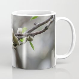 magnolia 01 Coffee Mug