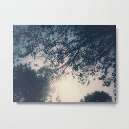 Lost in the Trees:  Periwinkle Metal Print