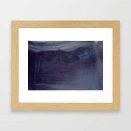 Moth-48 Framed Art Print