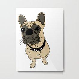Sheba the bulldog Metal Print