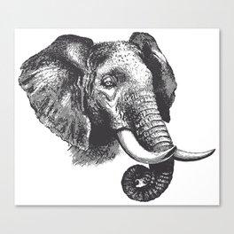 Engraved Elephant Canvas Print
