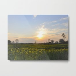Blooming in yellow ## Metal Print