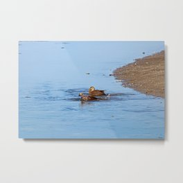 Fishin' in the Kitchen Metal Print
