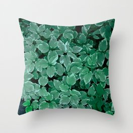 Smmer Leaves Throw Pillow