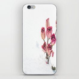 Rose in Snow iPhone Skin