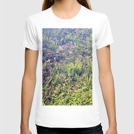 Going With The Flow River Aquarium T-shirt
