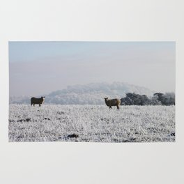 Winter Sheep Rug