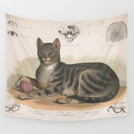 Vintage Illustration of a Domestic Cat (1872) Wall Tapestry