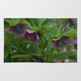 Floral Print 029 Rug
