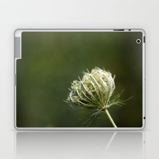 Closed Queen Anne's Lace Laptop & iPad Skin