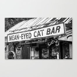 The Mean-Eyed Cat Canvas Print