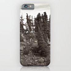Alpine Landscape Slim Case iPhone 6s