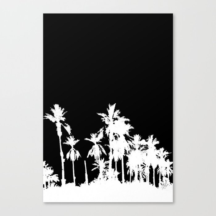Date Palm Trees 2 Canvas Print