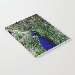 Proud Peacock Notebook