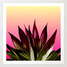 Bold Sunset Agave Fringe Illustration Art Print