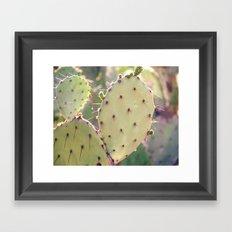 Prickly Pear Closeup Framed Art Print