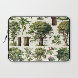 Adolphe Millot - Arbres A - French vintage botanical poster Laptop Sleeve