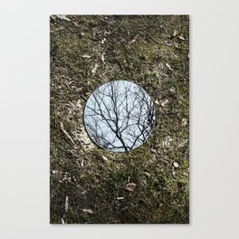 Reflections, Three Canvas Print